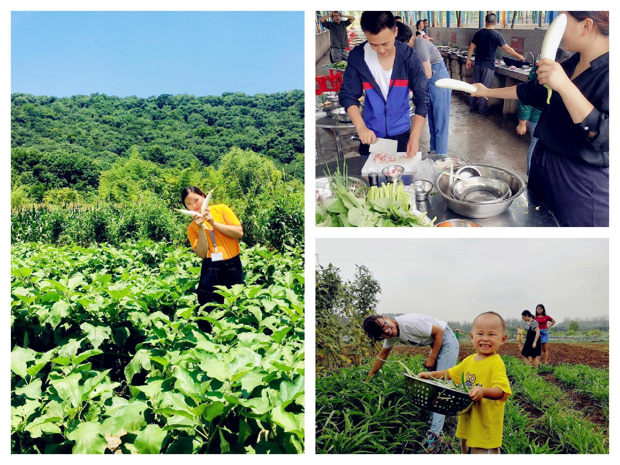 武汉野炊做饭乐农湖畔生态园
